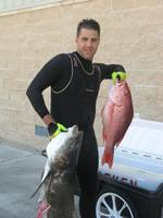 60_cobia_and_snapper_2.JPG