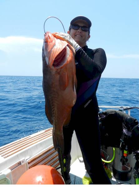"Red Grouper  17.88# 31""  7-24-12"