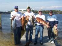 Red_Groupers_03-31-08.JPG